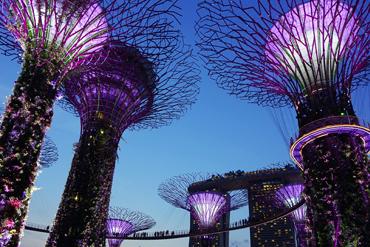 Singapore_Tile