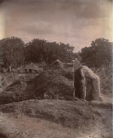 A photograph taken in 1895 of the elephant scultpure and rock inscription at Dhauli