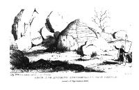 Sketch of rocks engraved with Ashokan edicts