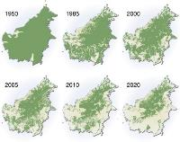 Borneo deforestation from 1950 to 2020